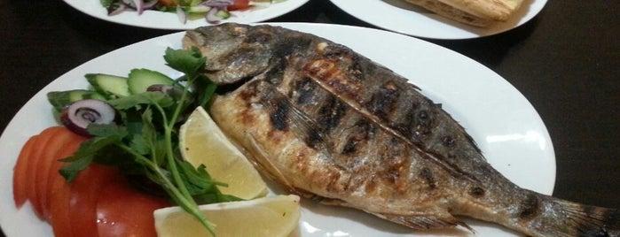 Izmir Kebap Haus is one of Restaurants.