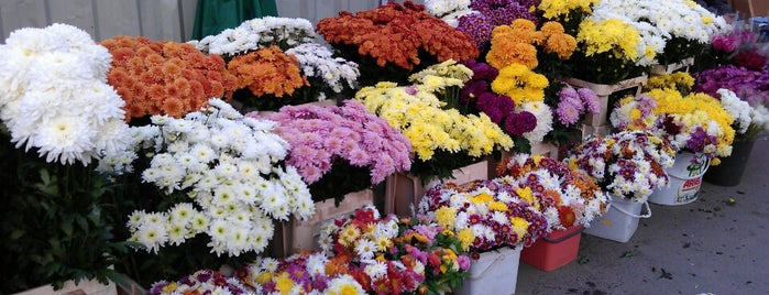 Пазара за цветя (Flower Marketplace) is one of Zorata'nın Beğendiği Mekanlar.