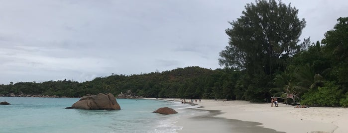Anse Lazio is one of Places to Visit: Seychelles.