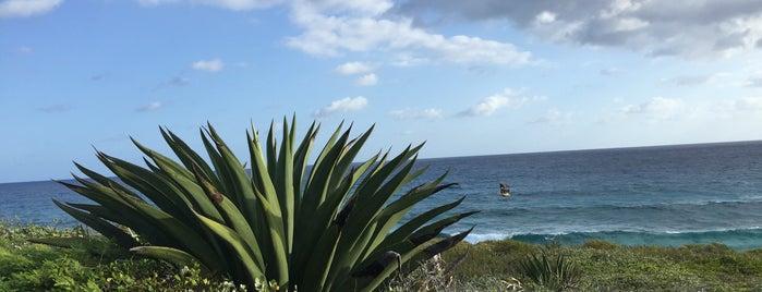 Rainbow Bay is one of Ico'nun Beğendiği Mekanlar.
