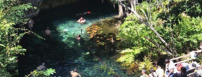 El Gran Cenote, Tulum is one of Mexico.