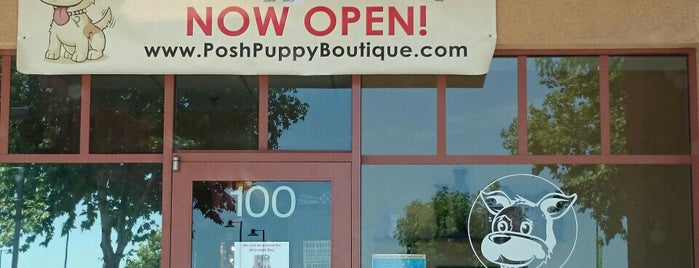 Posh Puppy Boutique is one of Of Interest.