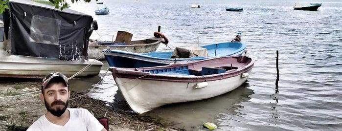 Balaban Göl Başı is one of Lugares favoritos de Aylin.