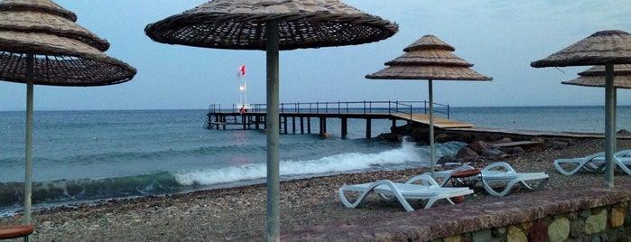 Calidus Hotel - Assos is one of Küçük ve Butik Oteller Türkiye.