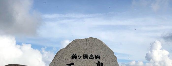 Ougahana is one of 西院 님이 좋아한 장소.