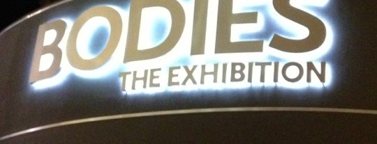 BODIES...The Exhibition is one of prefeitura.