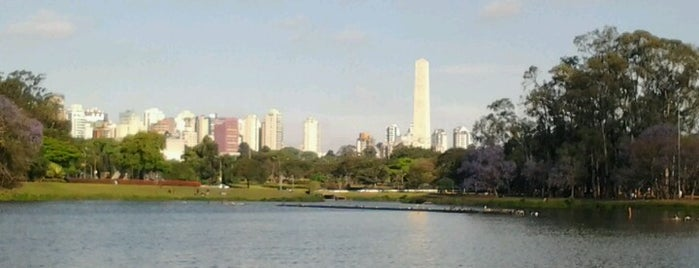 Parque Ibirapuera is one of SP.