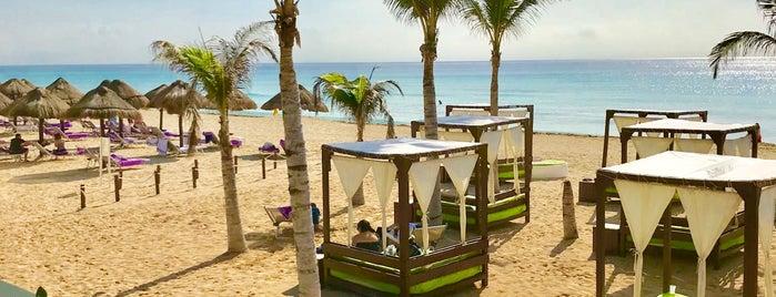 Cocos Beach Club is one of สถานที่ที่บันทึกไว้ของ Tim Maurice.