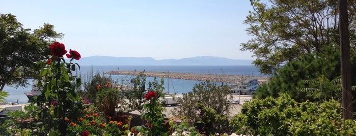 BABAKALE Güzelleştirme, Kültür Ve Dayanışma Derneği is one of Tempat yang Disimpan Enise.