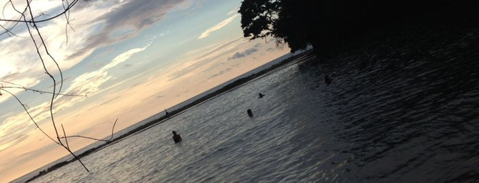 playa tortuguilla is one of Panama Beach discovery.