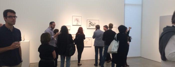 Sicardi Gallery is one of John'un Beğendiği Mekanlar.
