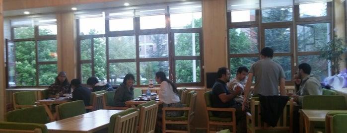 Cafe Wood is one of Zelish'in Kaydettiği Mekanlar.