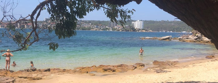 Manly Scenic Walkway is one of Locais curtidos por Globetrottergirls.