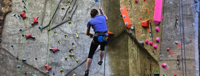 Vertical Endeavors Rock Climbing is one of The Great Twin Cities To-Do List.