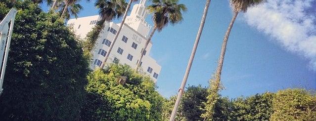 Delano Beach Club is one of Miami Music Week 2014.