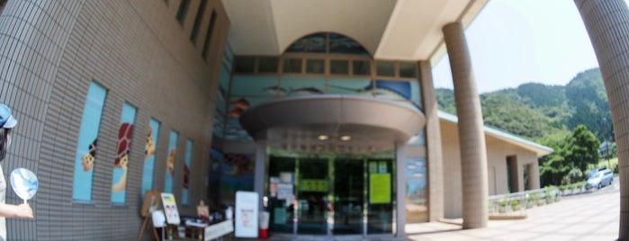 福井県海浜自然センター is one of ジャック : понравившиеся места.