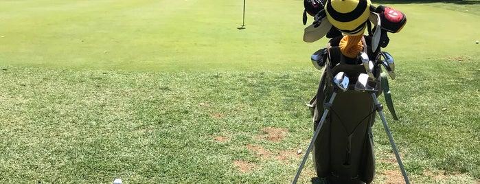Langston Golf Course is one of Lugares favoritos de Brooke.