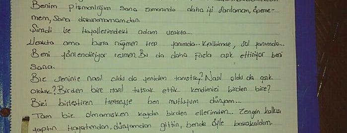 gözde's home is one of สถานที่ที่ Serkan ถูกใจ.