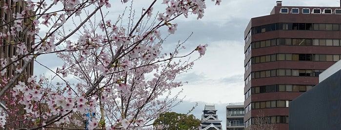 花畑広場(旧産業文化会館跡) is one of Japan.