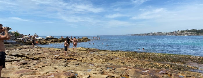 North Bondi Rocks is one of Sydney Favorites.