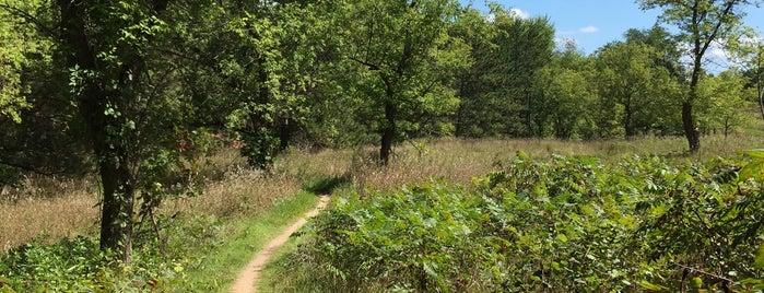 Emma Carlin Trail Head is one of Kevin 님이 좋아한 장소.