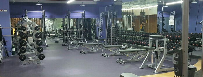 Anytime Fitness is one of สถานที่ที่ Fidel ถูกใจ.