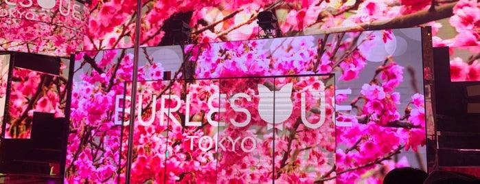バーレスクTOKYO is one of Posti che sono piaciuti a Nonono.