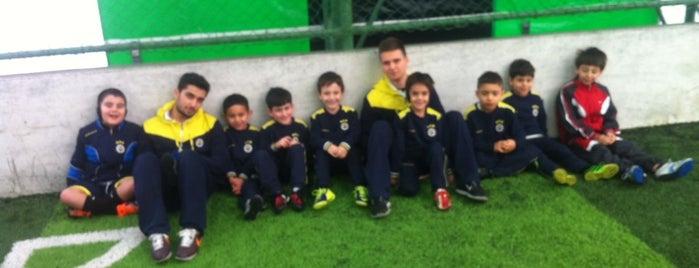 Atakent Fenerbahçe Futbol Okulu is one of Locais salvos de Cansın Bulut.