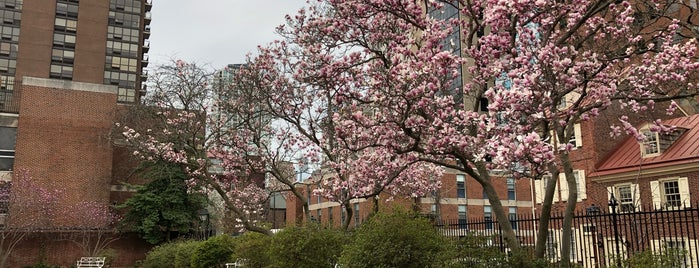 Magnolia Tribute Garden is one of When in Philly: Things to do.