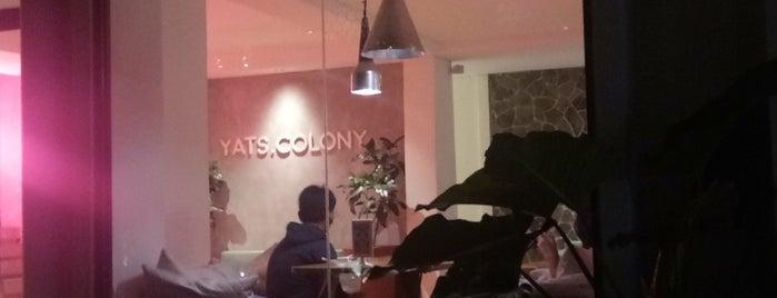 YATS Colony is one of Yogyakarta.