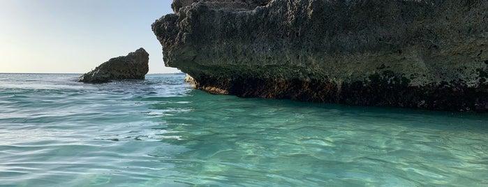Boca Catalina is one of Tempat yang Disukai Mark.