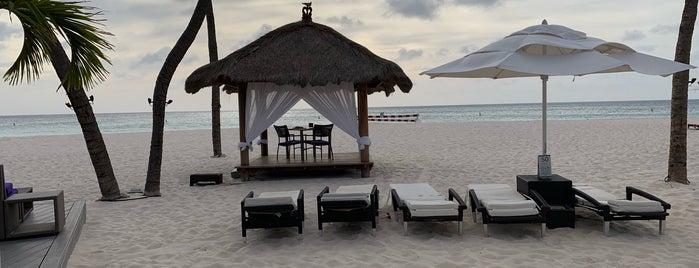 Bucuti & Tara Beach Resorts is one of สถานที่ที่ Mark ถูกใจ.