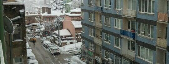 Ortapazar Caddesi is one of *** GEZGİNİN GÜNLÜĞÜ ' 2 ***.