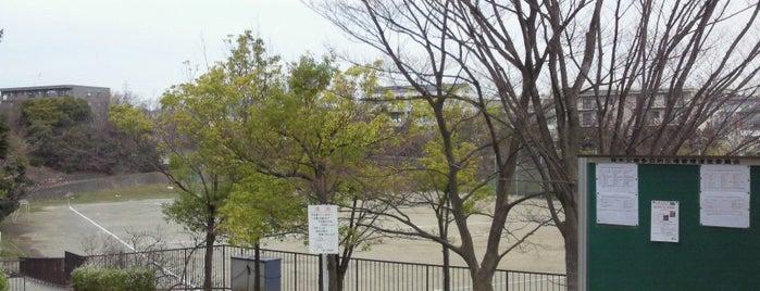 保木公園 is one of Locais curtidos por Shinichi.