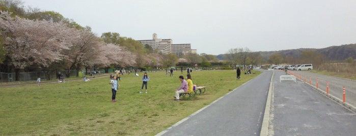 福生南公園 is one of Posti salvati di Shuma.