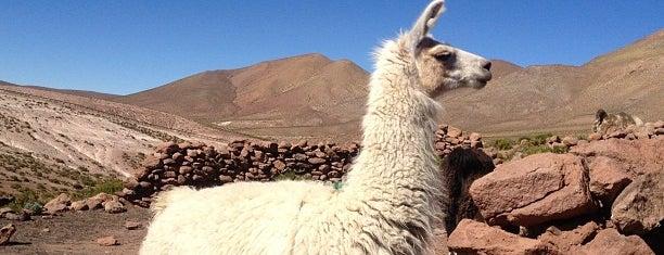 Machuca is one of San Pedro de Atacama.