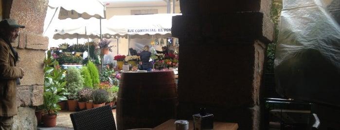 Casa Amparo is one of Comida, Restaurantes, etc..