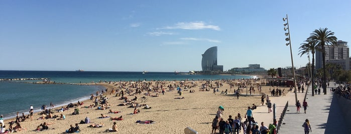Playa de la Barceloneta is one of Barcelona.