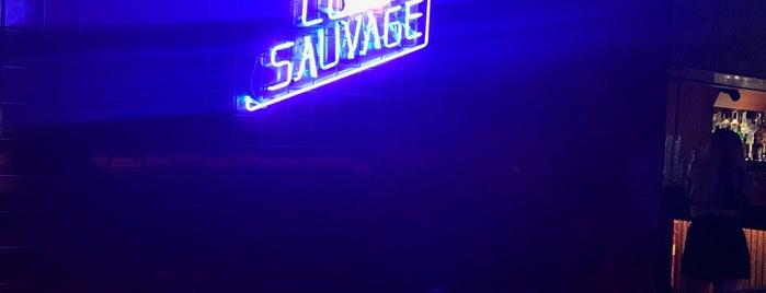 Bar Sauvage is one of Lieux qui ont plu à Dan.
