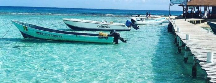 Isla Cozumel is one of Locais curtidos por Mayte.