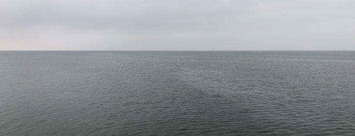 海の公園 is one of สถานที่ที่ 高井 ถูกใจ.