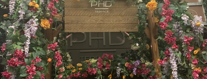 PHD Terrace at Dream Midtown is one of Christmas in NYC.