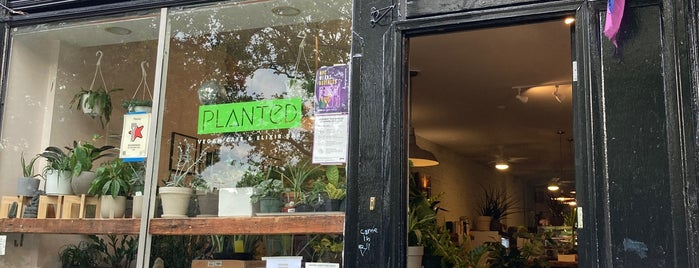 Planted is one of NEW DORP//NEW YORK (part three).
