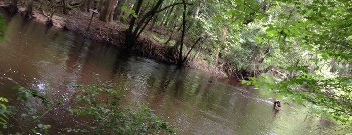 Horne Wetlands Park is one of South Carolina.