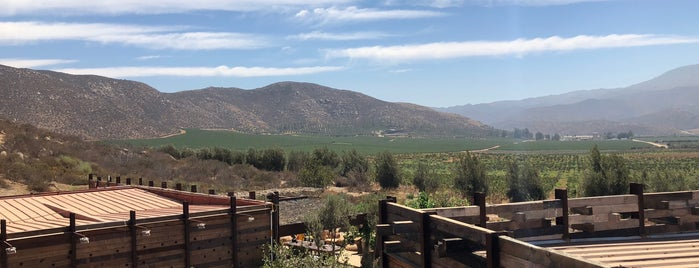 Bruma is one of Valle de Guadalupe — Places To Visit.