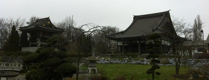 EKO Haus der japanischen Kultur is one of Düsseldorf pending.