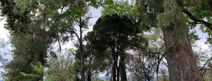 Parque San Bartolome De Las Casas is one of Posti salvati di Egoisa.