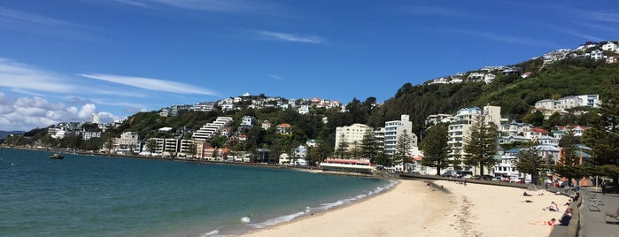 Oriental Bay is one of Wellington.