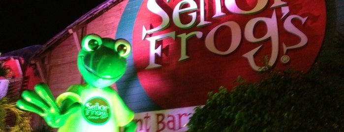 Señor Frog's Store is one of Locais curtidos por Gabyks.