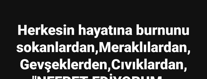 FB tekstil is one of İZMİR BÖLGESİ, TEKSTİL&KONFEKSİYON İMALATÇILARI.